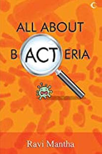 All About Bacteria